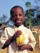 boy holding cocoa pod
